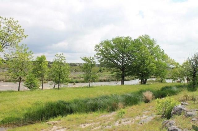 7 Althaus Ranch Rd, Johnson City, TX 78636 (#3441486) :: The Heyl Group at Keller Williams