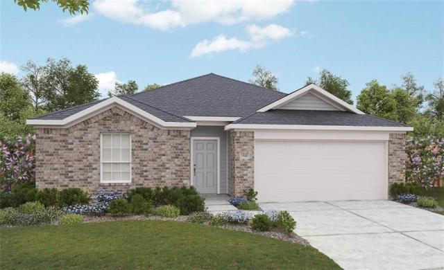 13529 Ciderwood Ct, Manor, TX 78653 (#3446288) :: The Gregory Group