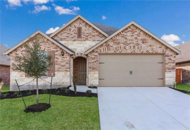 155 Tailwind Dr, Kyle, TX 78640 (#3446753) :: 12 Points Group