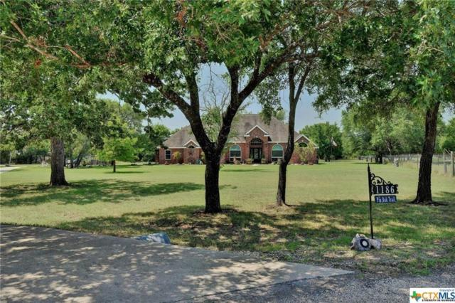 1186 Pin Oak Trl, Salado, TX 76571 (#3448601) :: The Perry Henderson Group at Berkshire Hathaway Texas Realty