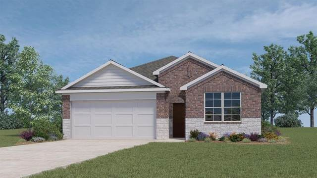 136 Struss Dr, Georgetown, TX 78626 (#3449917) :: All City Real Estate