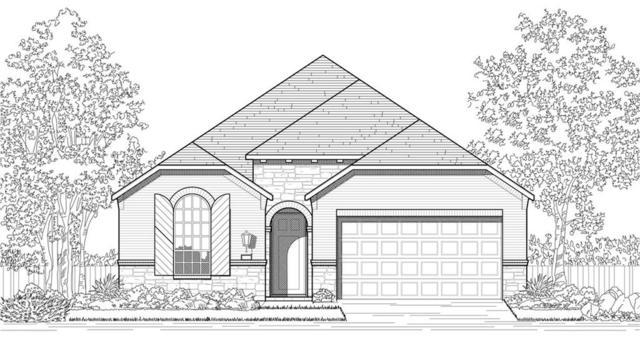 11125 American Mustang Loop, Manor, TX 78653 (#3459136) :: The Perry Henderson Group at Berkshire Hathaway Texas Realty