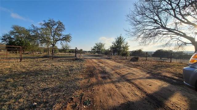 501 & 541 Brizendine Rd, Liberty Hill, TX 78642 (#3466174) :: Papasan Real Estate Team @ Keller Williams Realty