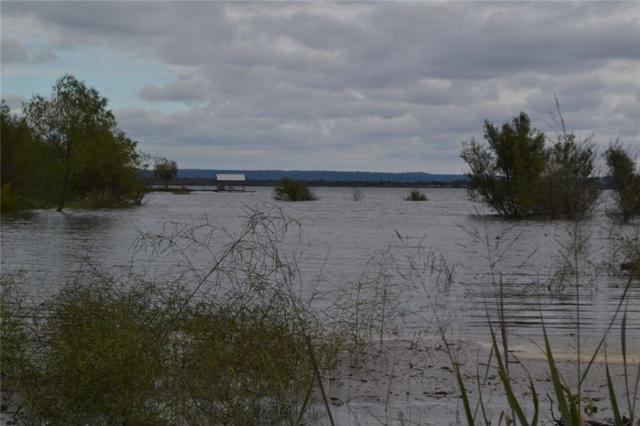 Lot 203 & 204 Summit, Buchanan Dam, TX 78609 (#3490817) :: The ZinaSells Group