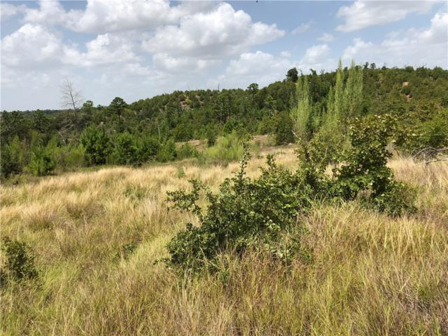 Lot 4 Tall Forest, Bastrop, TX 78602 (#3494949) :: The Heyl Group at Keller Williams