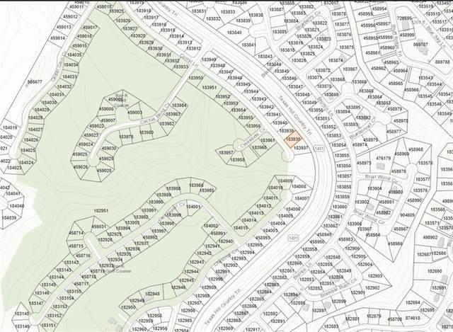 8407 Corral Cv, Lago Vista, TX 78645 (#3510761) :: Zina & Co. Real Estate