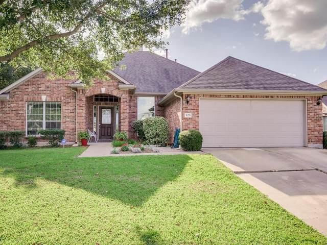 125 Amber Ash Dr, Kyle, TX 78640 (#3511376) :: Azuri Group | All City Real Estate
