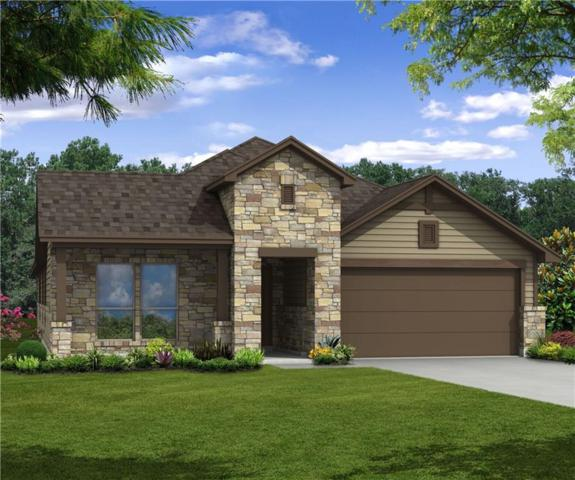 1900 Goldilocks Ln, Austin, TX 78652 (#3512614) :: Amanda Ponce Real Estate Team