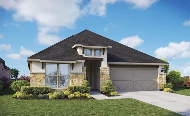 377 Cherrystone Loop, Buda, TX 78610 (#3514699) :: Papasan Real Estate Team @ Keller Williams Realty