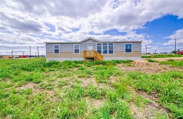 110 Harlequin Cv, San Marcos, TX 78666 (#3521400) :: 10X Agent Real Estate Team