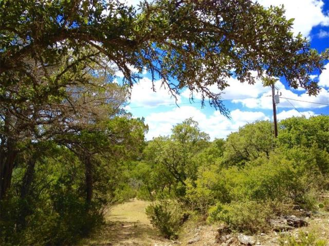 86.2708 acres of Vista Verde Path, Wimberley, TX 78676 (MLS #3524676) :: Vista Real Estate