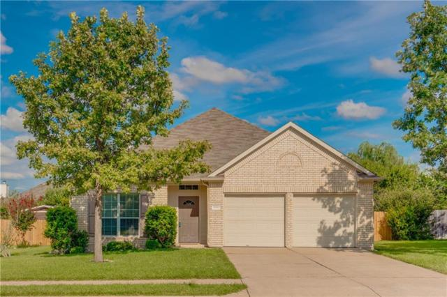 20750 Silverbell Ln, Pflugerville, TX 78660 (#3551198) :: The Heyl Group at Keller Williams