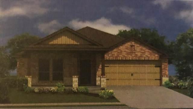 101 Green Jay Dr, Jarrell, TX 76537 (#3555666) :: Douglas Residential