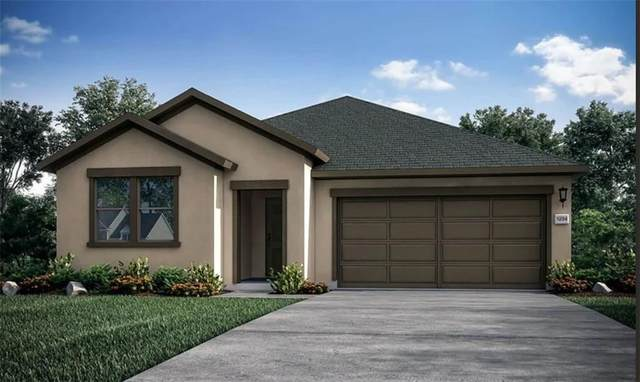 1003 Sandra Ann Way, Hutto, TX 78634 (#3562315) :: Papasan Real Estate Team @ Keller Williams Realty