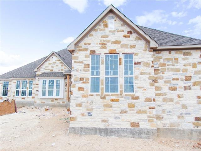 307 Bristlecone Dr, Driftwood, TX 78619 (#3571290) :: Papasan Real Estate Team @ Keller Williams Realty