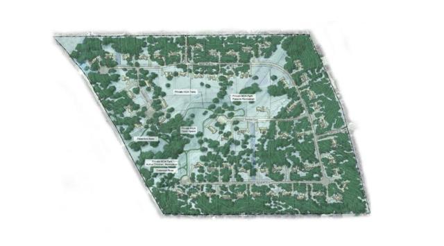 15924 Grumbles Ln, Bee Cave, TX 78738 (#3609509) :: Papasan Real Estate Team @ Keller Williams Realty