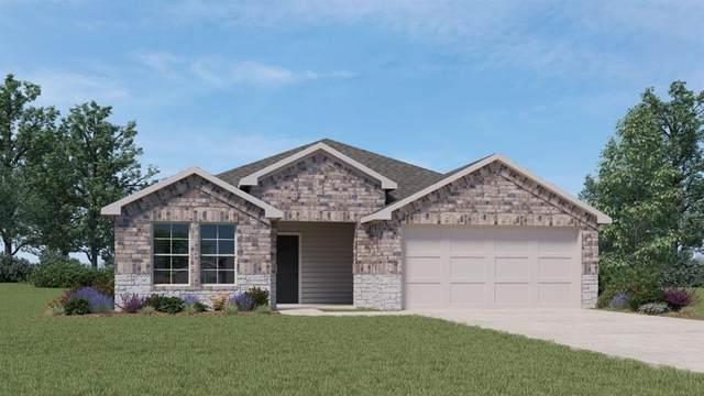 740 Armadillo Dr, Seguin, TX 78155 (#3613954) :: First Texas Brokerage Company