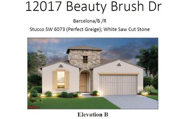 12017 Beautybrush Dr, Bee Cave, TX 78738 (#3629567) :: Green City Realty