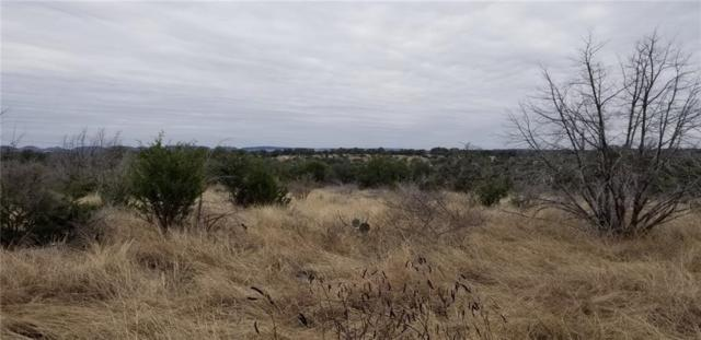 00 River View Dr, Johnson City, TX 78636 (#3638499) :: The Heyl Group at Keller Williams