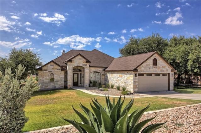 18711 Venture Dr, Point Venture, TX 78645 (#3639564) :: The Perry Henderson Group at Berkshire Hathaway Texas Realty