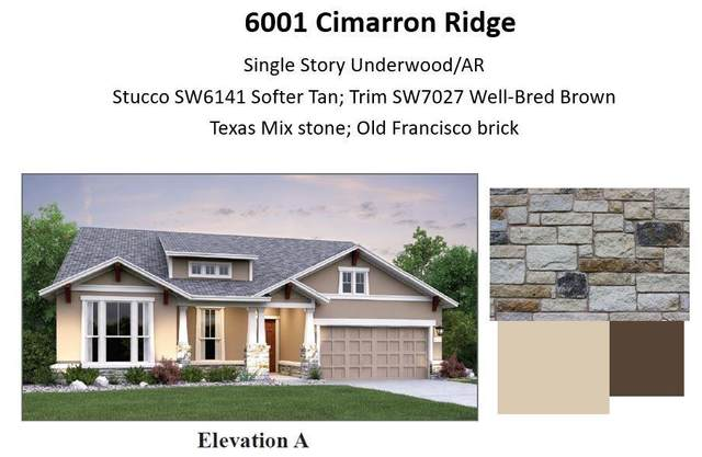 6001 Cimarron Ridge Ln, Austin, TX 78738 (#3645152) :: Sunburst Realty