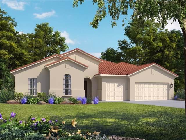 1805 Mazarro Dr, Leander, TX 78641 (#3646648) :: Ana Luxury Homes