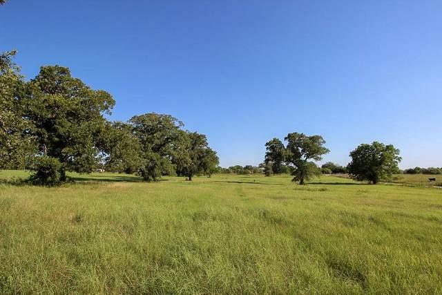 0 Old Mcmahan Rd, Lockhart, TX 78644 (#3673499) :: The Heyl Group at Keller Williams
