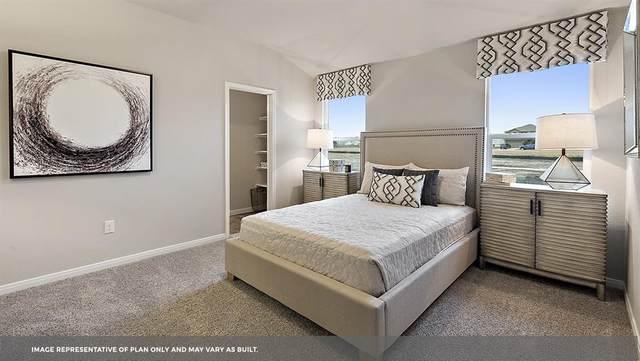 201 Spider Lily Dr, Kyle, TX 78640 (#3675143) :: Papasan Real Estate Team @ Keller Williams Realty