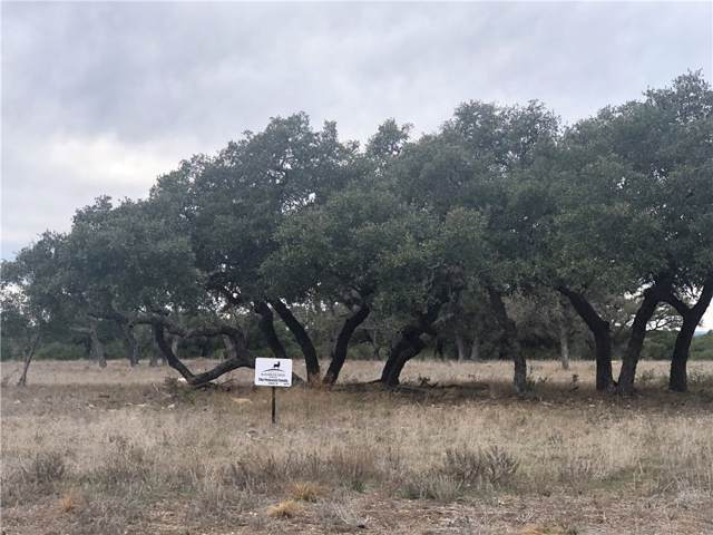 Lot 171 Impala Ln, Lampasas, TX 76550 (#3680866) :: Lucido Global