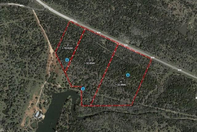 Tract # 3 Cr 2341, Burnet, TX 78605 (#3682703) :: Ben Kinney Real Estate Team