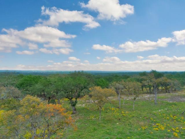 448 Stallion Lane, Dripping Springs, TX 78620 (#3689624) :: Papasan Real Estate Team @ Keller Williams Realty