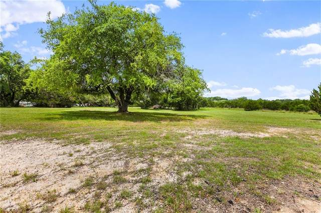 120 Hillview Cir, Dripping Springs, TX 78620 (#3704519) :: Azuri Group | All City Real Estate