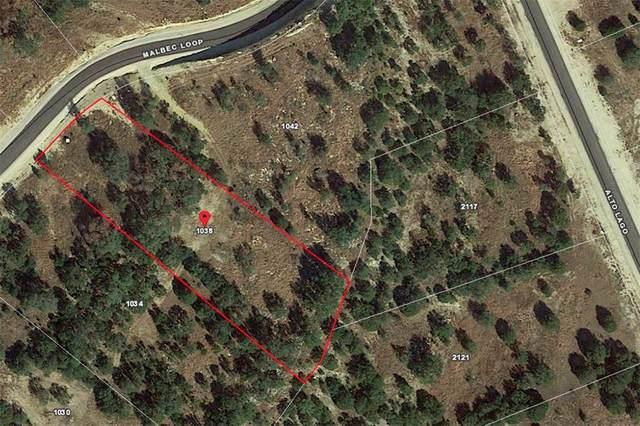 1038 Malbec Loop, Canyon Lake, TX 78133 (#3706451) :: Zina & Co. Real Estate