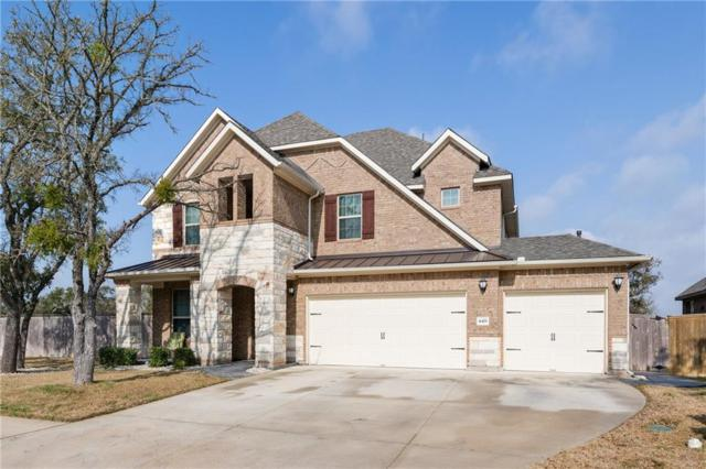 4421 Big Tree Trl, Leander, TX 78641 (#3709670) :: The Perry Henderson Group at Berkshire Hathaway Texas Realty