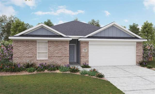 126 Balsam St, Hutto, TX 78665 (#3711585) :: Realty Executives - Town & Country