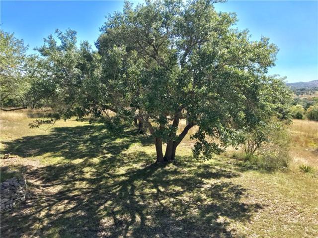 0 Mccall Creek Rd, Blanco, TX 78606 (#3713542) :: NewHomePrograms.com LLC
