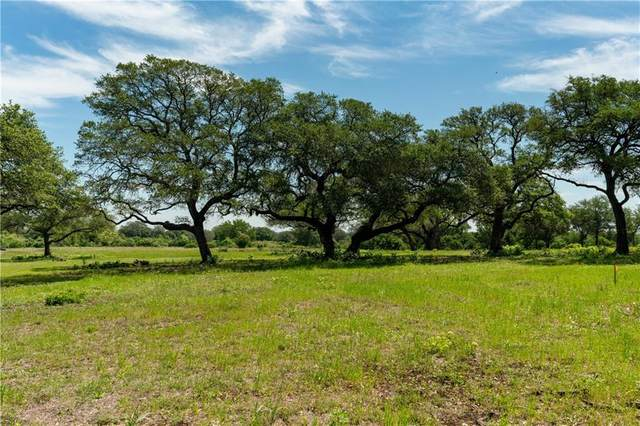 RANCH #6 Liberty Ranch Rd, Austin, TX 78737 (#3718909) :: Papasan Real Estate Team @ Keller Williams Realty