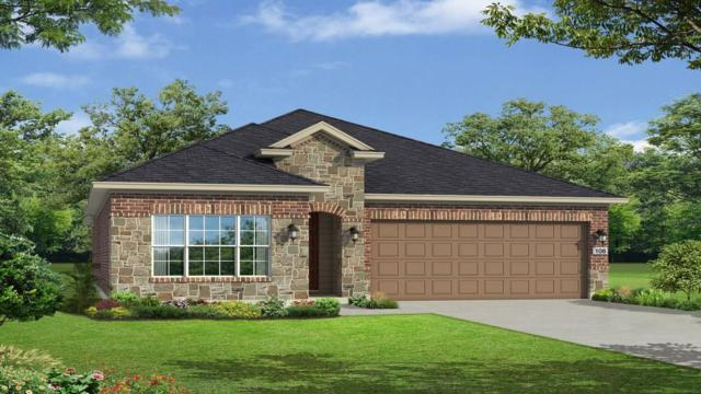 5213 Lusso Trl, Round Rock, TX 78665 (#3721070) :: The Heyl Group at Keller Williams