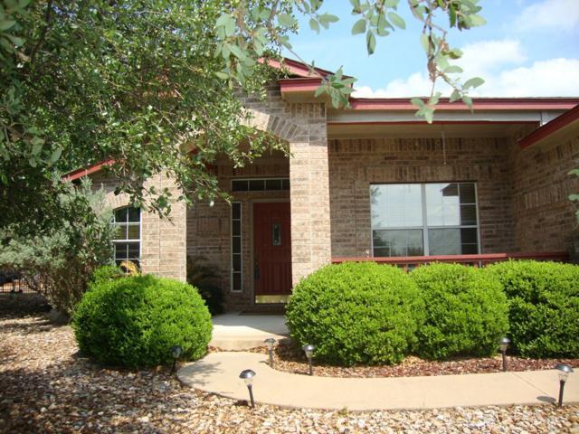 20729 Henry Ave, Lago Vista, TX 78645 (#3722084) :: The ZinaSells Group