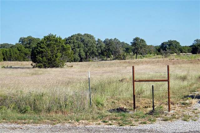 5 Saddle Ridge Rd, Bertram, TX 78605 (MLS #3725343) :: Brautigan Realty