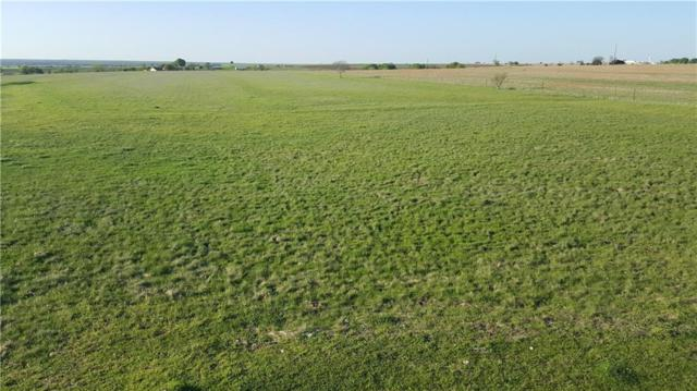 lot 2 County Rd 310, Jarrell, TX 76537 (#3732596) :: The Perry Henderson Group at Berkshire Hathaway Texas Realty