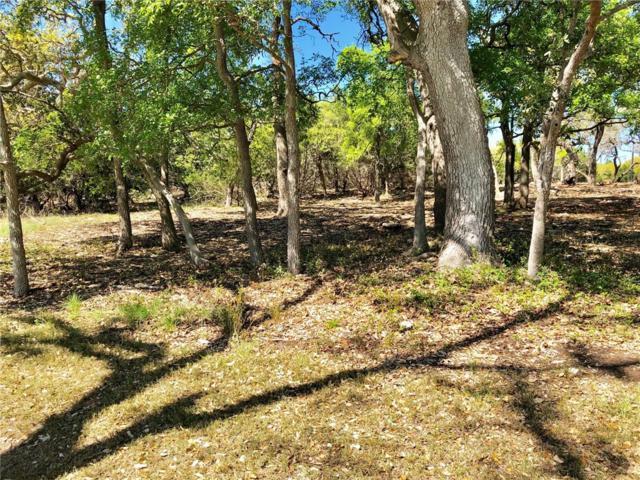 00 E. John Bird, Blanco, TX 78606 (#3734789) :: Papasan Real Estate Team @ Keller Williams Realty