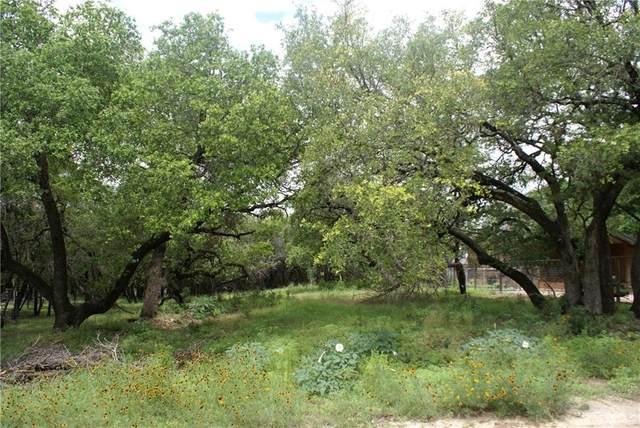 10300 Little Creek Cir, Dripping Springs, TX 78620 (#3781122) :: R3 Marketing Group