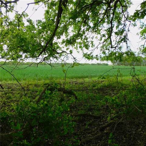 Lot 13 - 16 County Road 417, Thorndale, TX 76577 (#3817858) :: Zina & Co. Real Estate