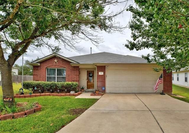 256 Catalpa Dr, Kyle, TX 78640 (#3823368) :: Papasan Real Estate Team @ Keller Williams Realty