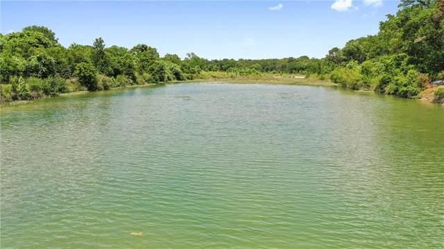 1407 Cox Rd Rd, Blanco, TX 78606 (#3833461) :: Papasan Real Estate Team @ Keller Williams Realty