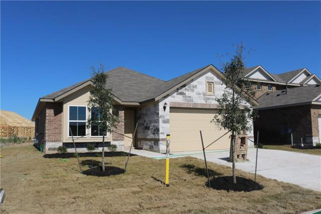 5949 Agostino Dr, Round Rock, TX 78665 (#3838751) :: The Heyl Group at Keller Williams