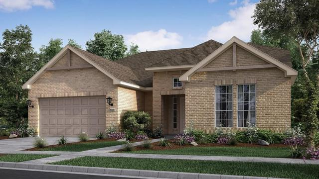 4849 Fiore Trl, Round Rock, TX 78665 (#3838977) :: Papasan Real Estate Team @ Keller Williams Realty