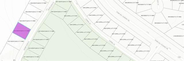 8314 Cedar Glen Cv, Lago Vista, TX 78645 (#3839106) :: Papasan Real Estate Team @ Keller Williams Realty