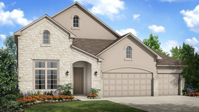 4811 Fiore Trl, Round Rock, TX 78665 (#3842649) :: Watters International